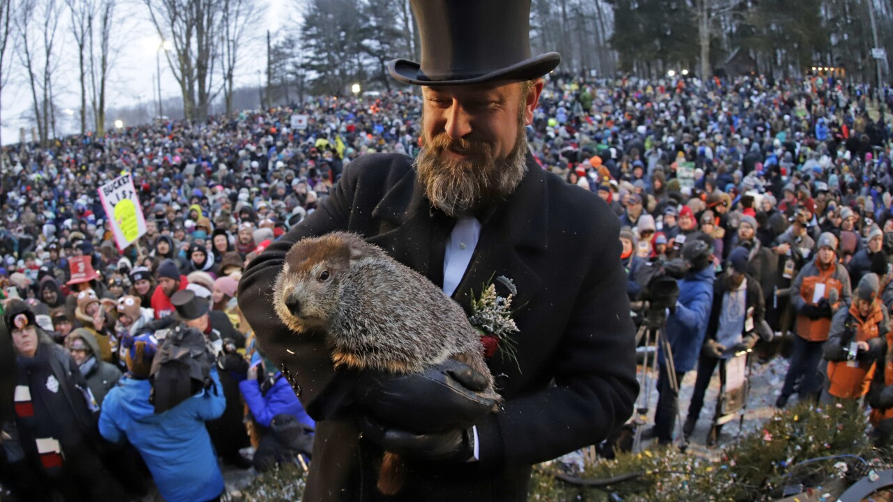 Punxsutawney Phil, the groundhog, predicts early spring