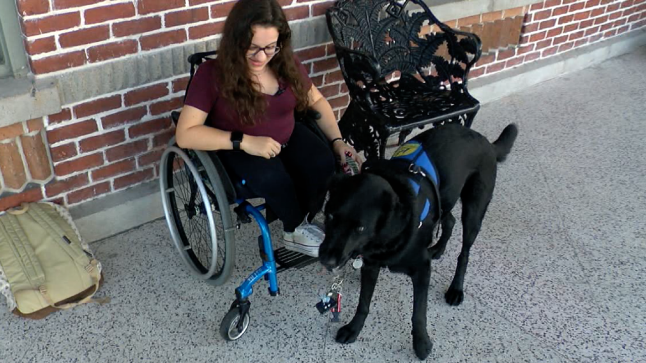 Nerf the service dog with Leigh Dittman