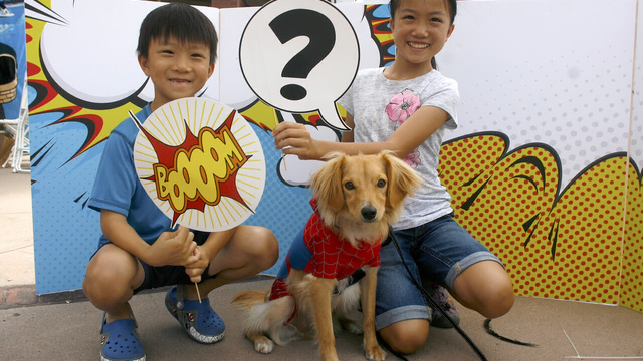 'PAWmicon' brings out San Diego's super dogs