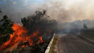 Deforestation In Brazil's Amazon Skyrockets After Years Of Decline