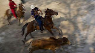 rodeo generic.JPG