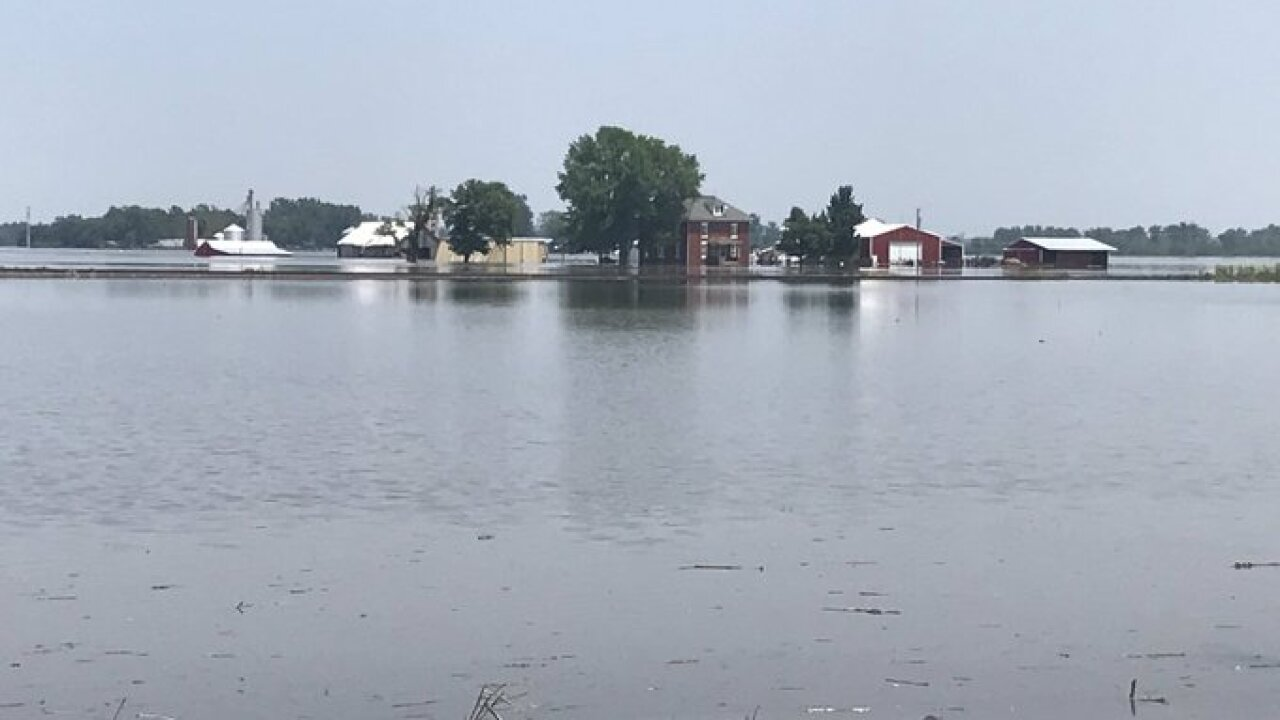 levasy flood1.jpg