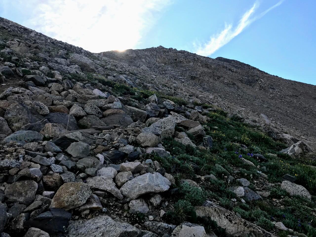 Mount Yale_Cecilia Potter Whyel
