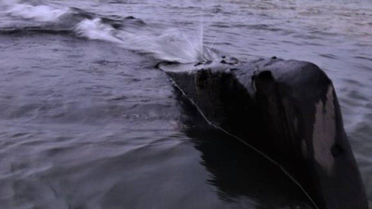 11.30.19 Debris from Shipwreck Peaks out of the Water after Storm - Courtesy Rick Vuyst via Facebook.jpg