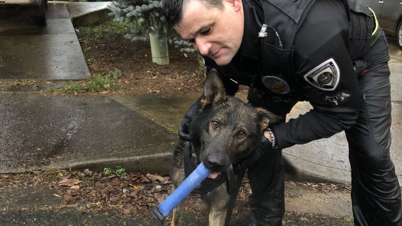 KPTV K9 finds suspected DUII driver