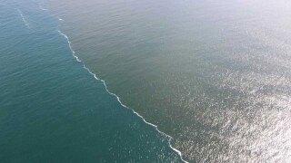 red-tide-on-072021-FWC.jpg