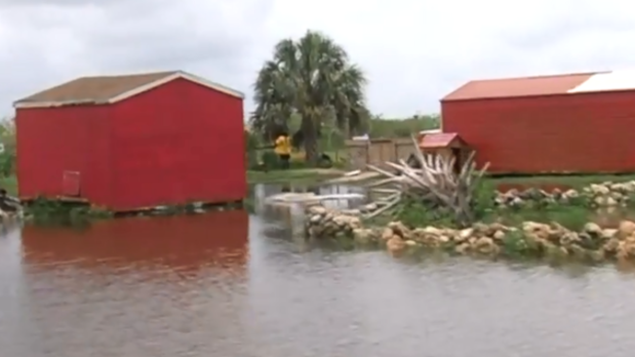 Animal rescue organization in Loxahatchee flooded out