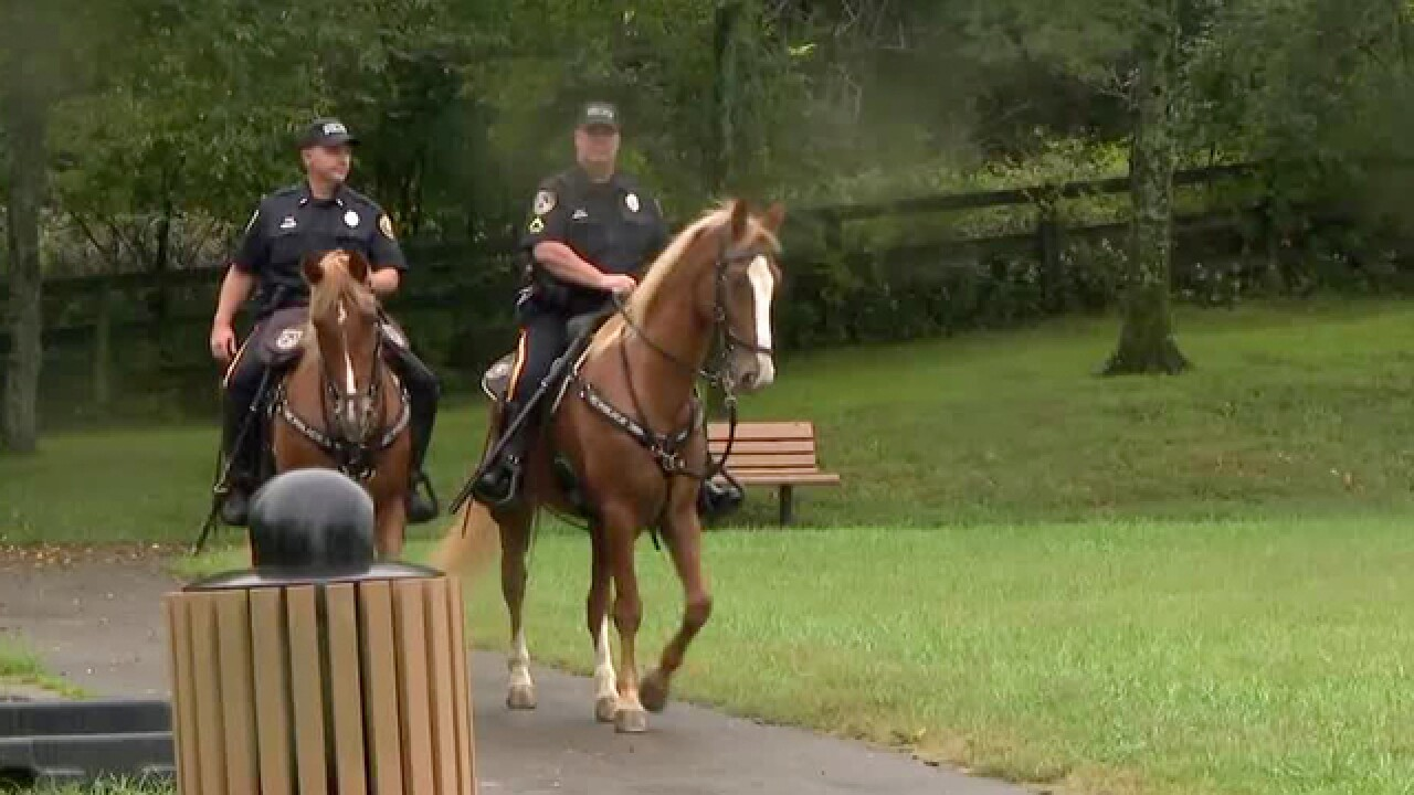 City Grapples With Best Way To House Police Horses