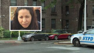 Queens mom fatally shot by stray bullet in