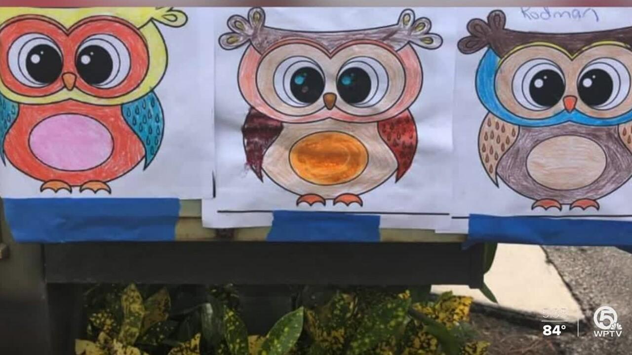 wptv-Binks-Forest-Elementary-owls.jpg