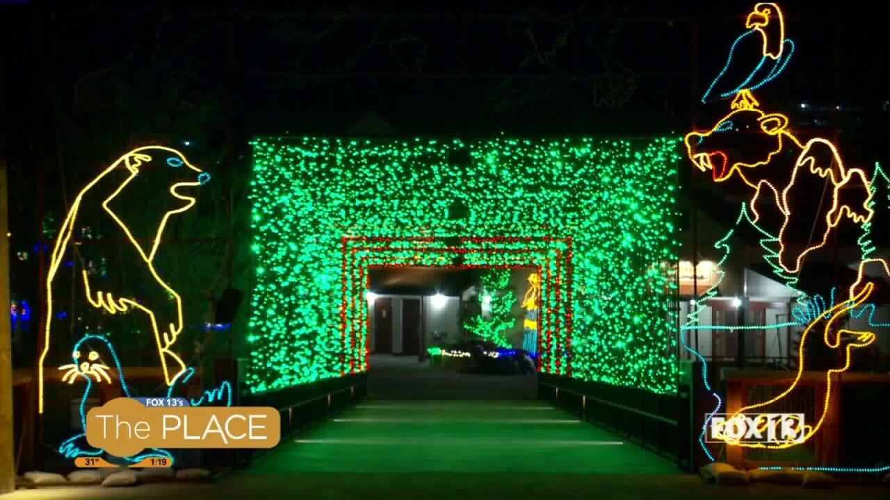 Get the kids in bed on time while still letting them ring in the new year withZooLights!