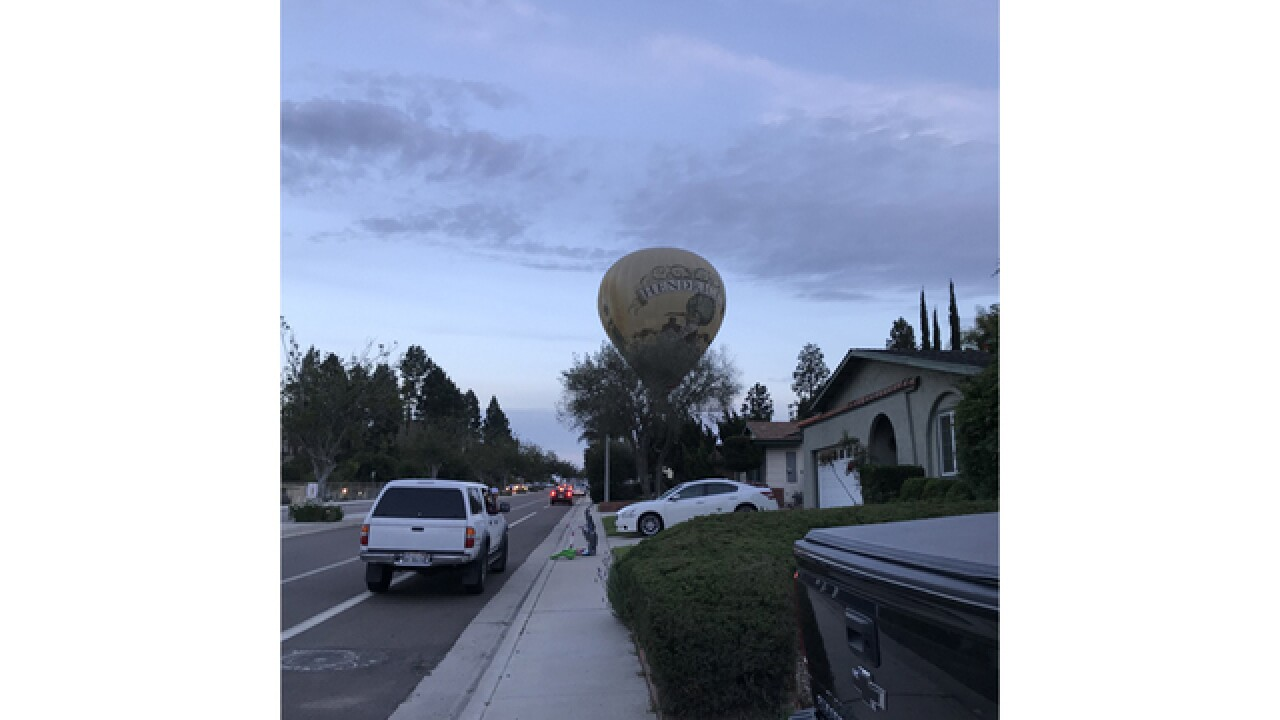 Hot air balloon makes landing near homes