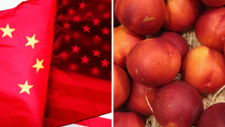 Ag Report: Trade War, Fruit Production