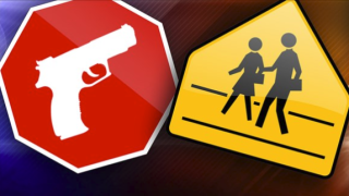 school guns