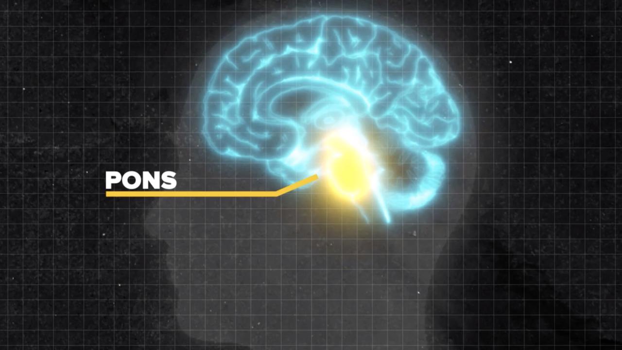 brain cancer breakthrough