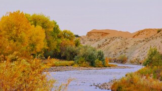 Florence CO Carol Gebhart fall river