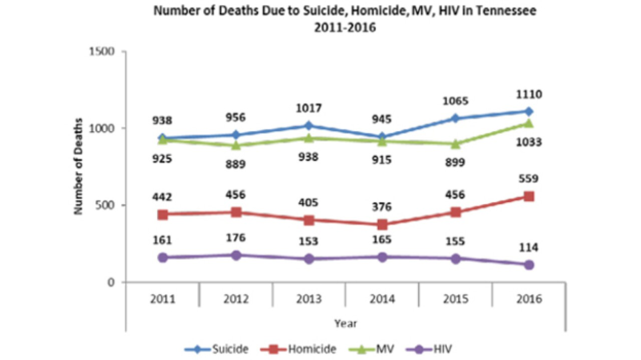 Report: Suicide Deaths Higher Than Fatal Crashes