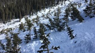 avalanche-ophir-pass.jpeg