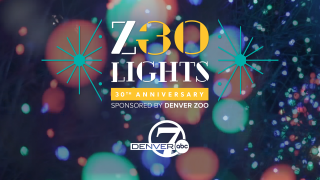 Denver Zoo's Zoo Lights is celebrating 30 years in 2020.