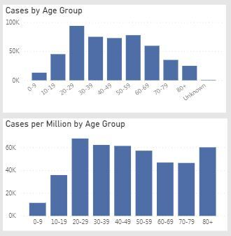 1.2.21 Cases by Age Group - Courtesy Michigan.Gov.JPG