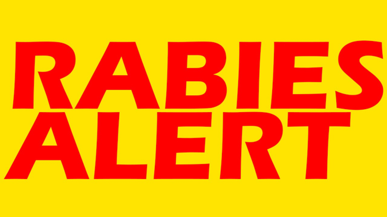 Rabies alert issued after 3 people are attacked by rabid cat in Hillsborough County