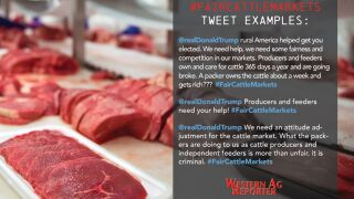 Cattlemen urged to send #FairCattleMarkets via Twitter to President Trump