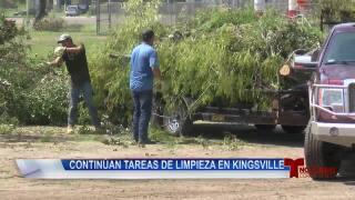 Continúan tareas de limpieza en Kingsville