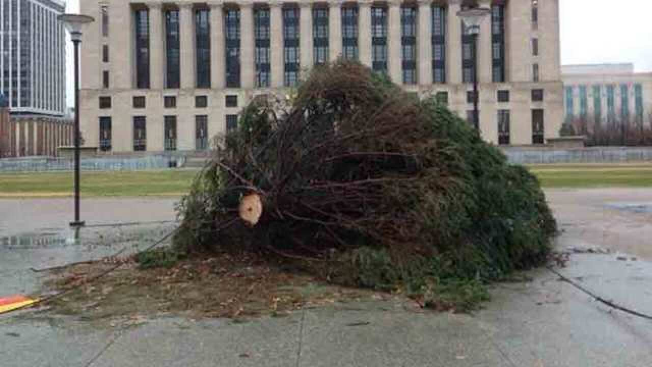 City Christmas Tree Knocked Over In Storm