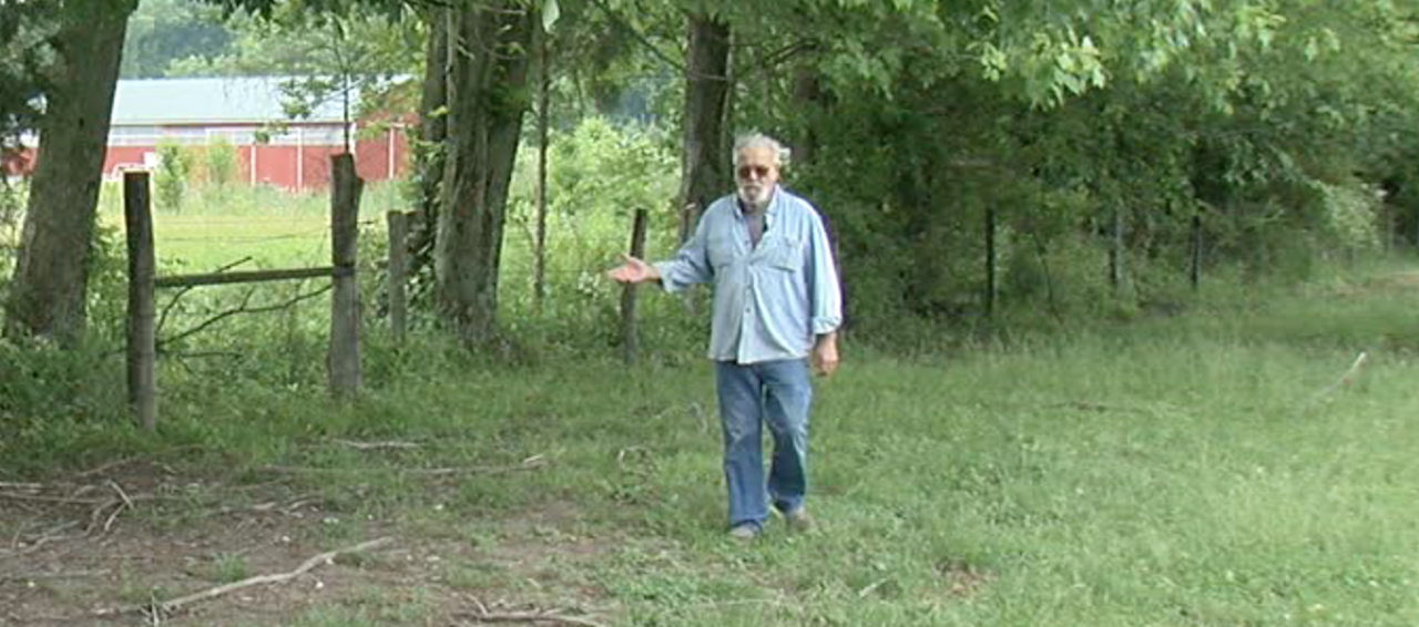 Tom Brown walks along what's left of his tree line on June. 2.
