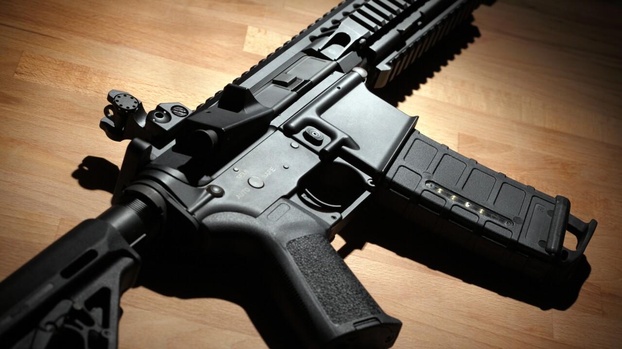 Virginia Democrats pass first gun bills throughcommittee