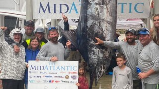 Billy Gerlach (behind sign, holding dorsal fin) stands with his record blue marlin.