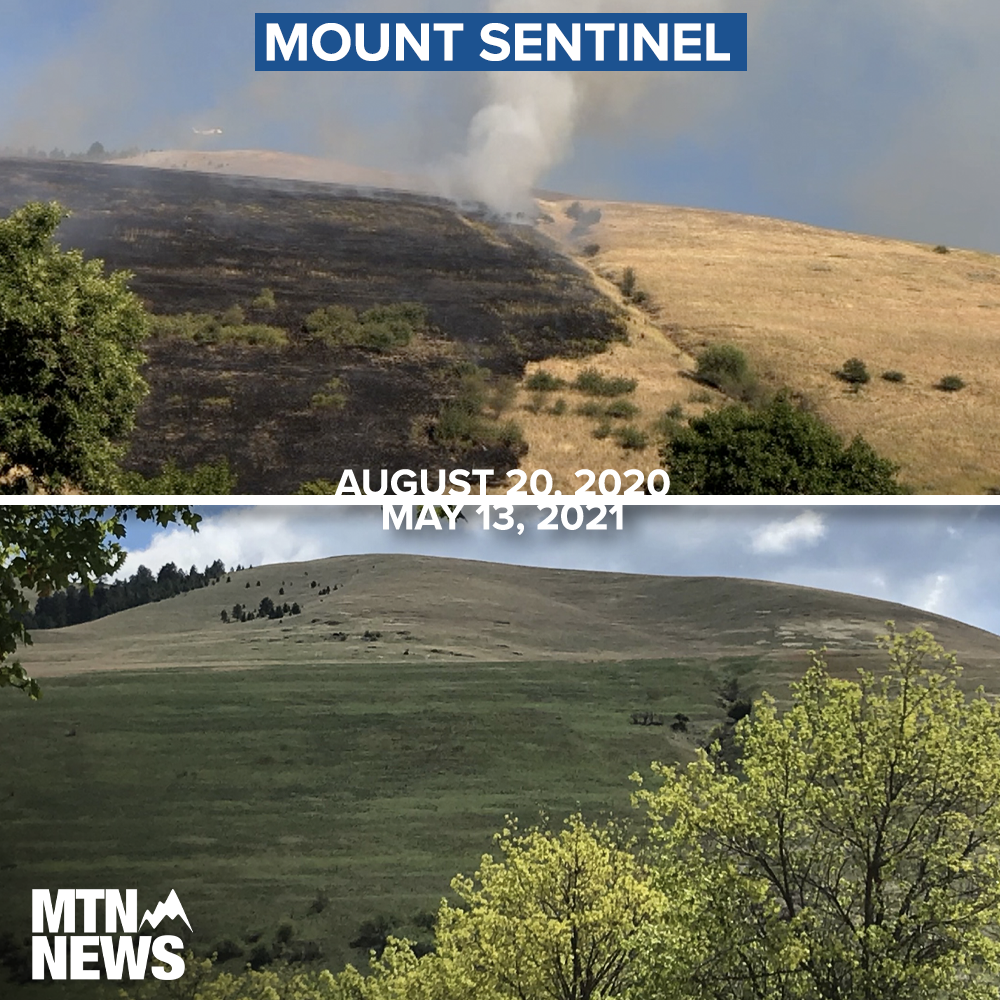 MOUNT SENTINEL BEFORE AND AFTER