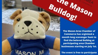Find the Mason Bulldog