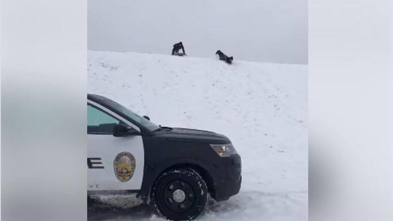 noblesville police sledding.JPG