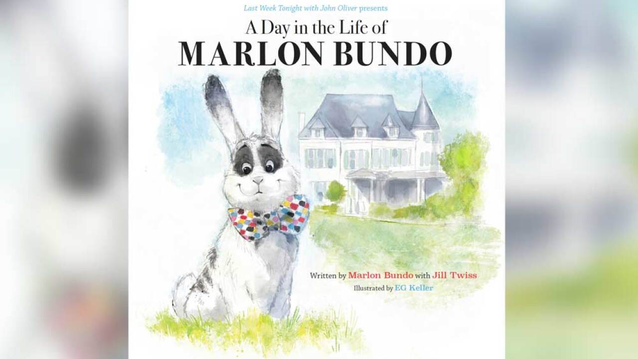 Seminole County school district says gay bunnies' book needed approval