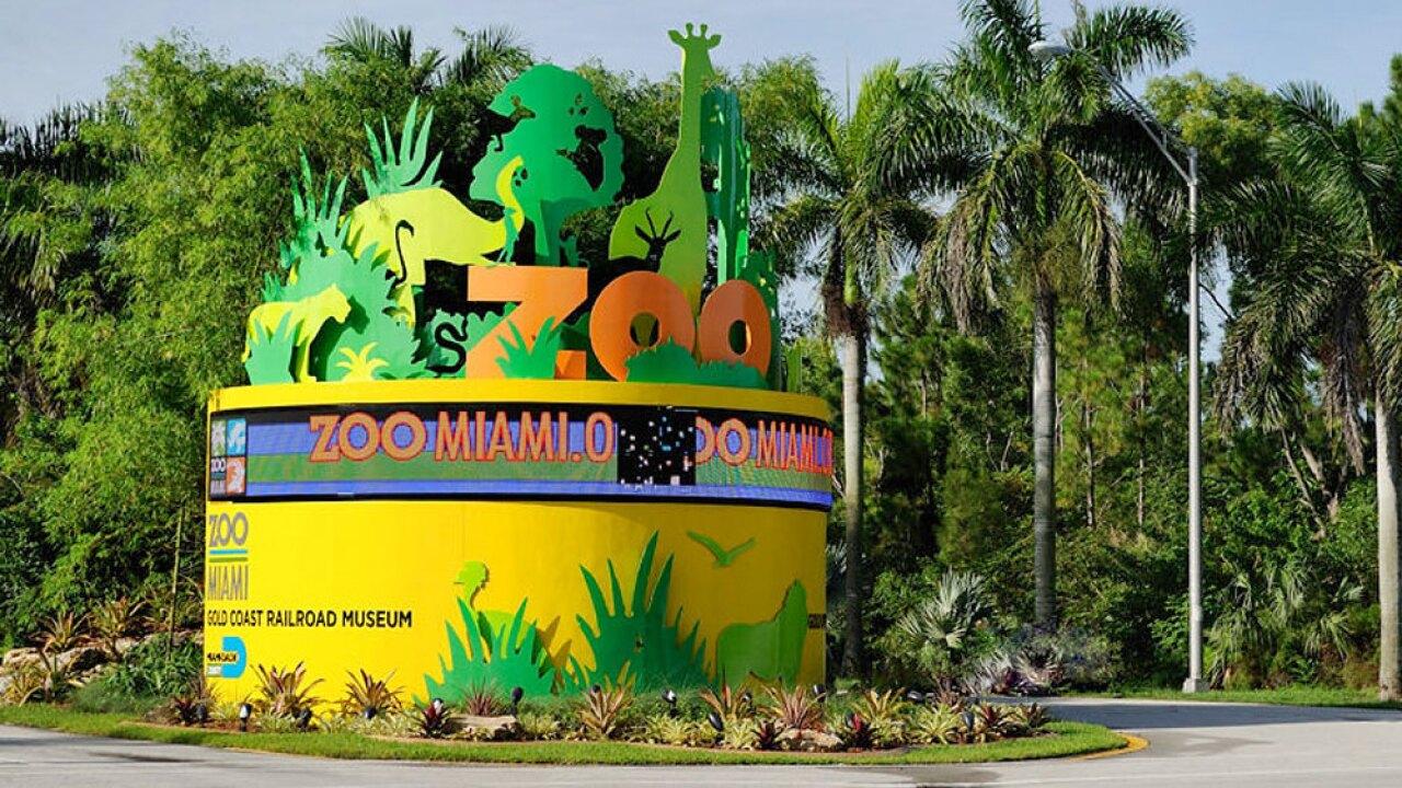 wptv-zoo-miami-.jpg
