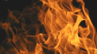 Prescribed burning to begin Tuesday at Hearst San Simeon State Park
