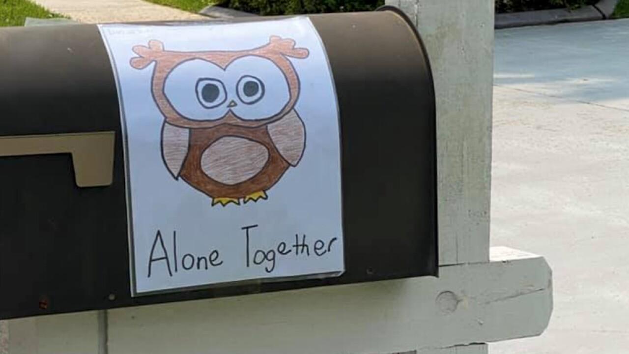 owl-mailbox