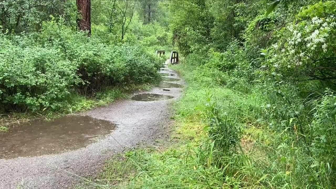 wet ground trail