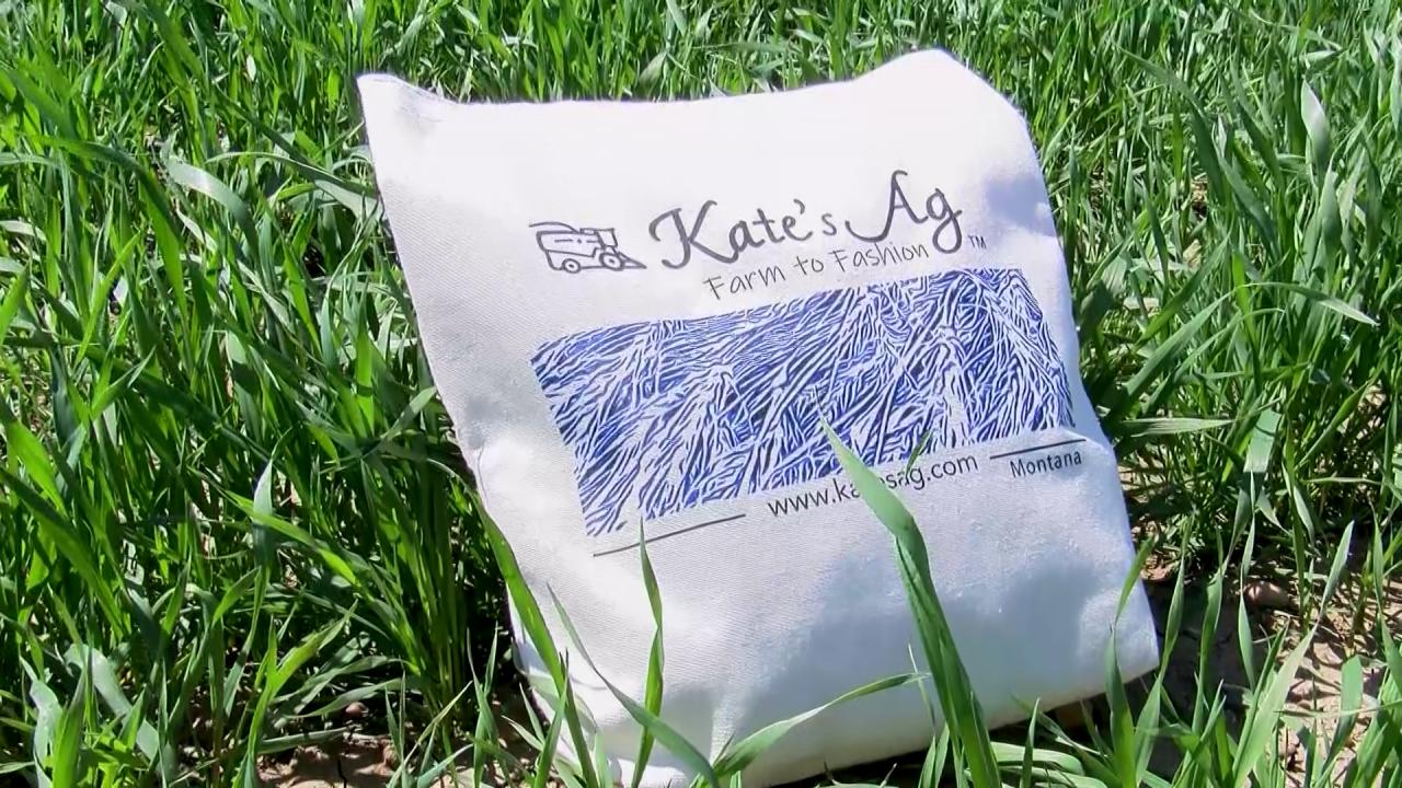 Kate's Ag tote bag