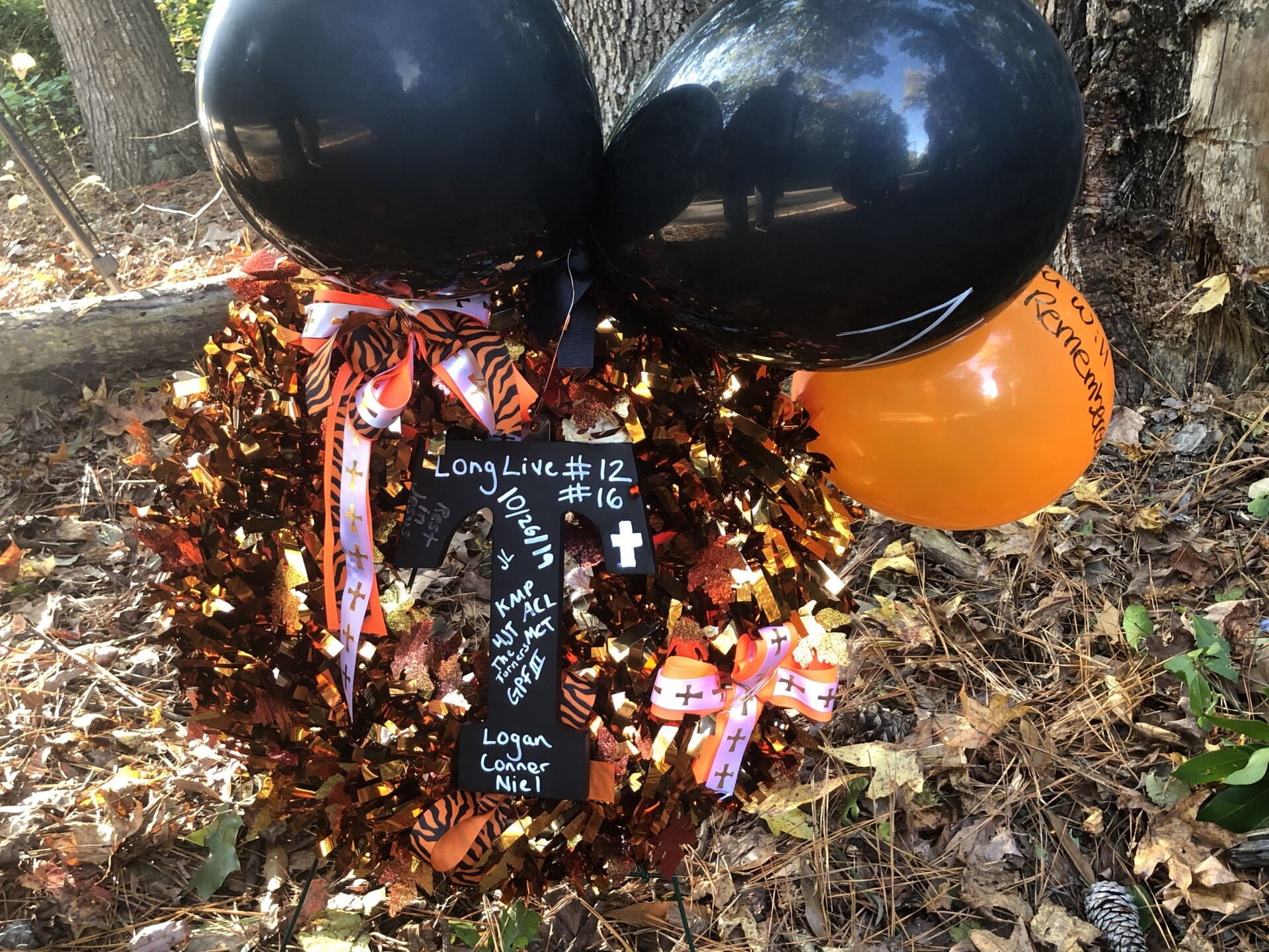 Photos: Community mourns after 3 teenagers killed in York Countycrash