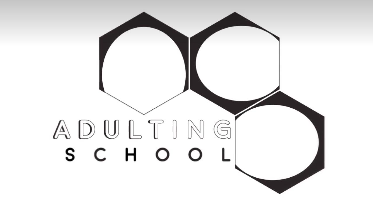Adulting School_image_screenshot.PNG