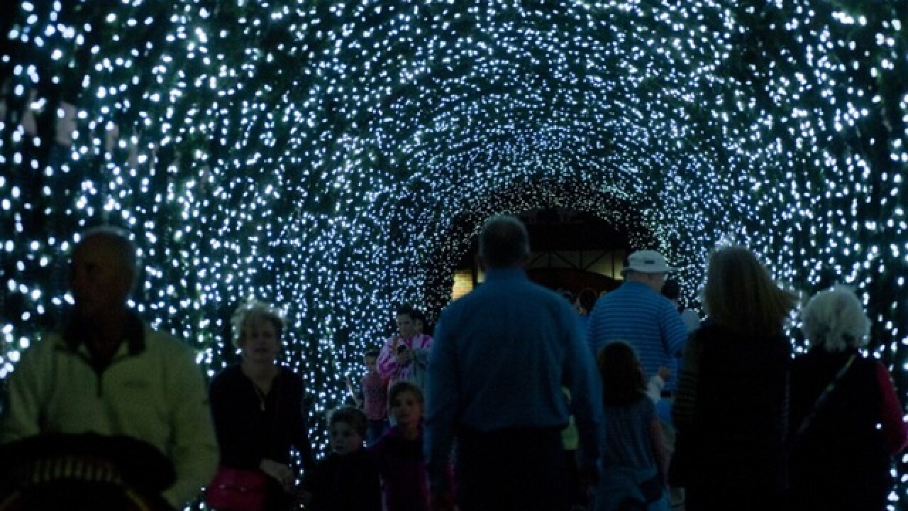 Zoo illuminating 35th annual Festival of Lights