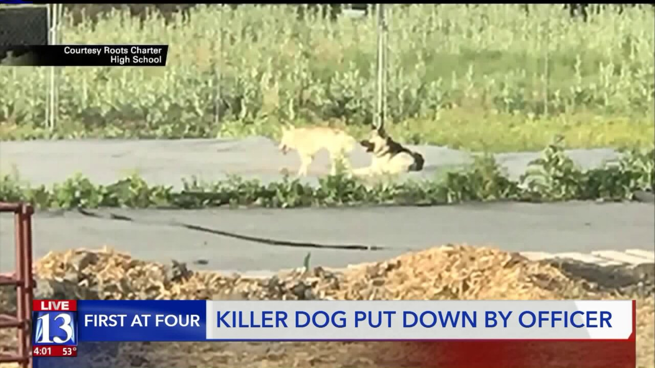 Animal services puts down 'vicious' dog suspected in dozens of livestock deaths in West ValleyCity
