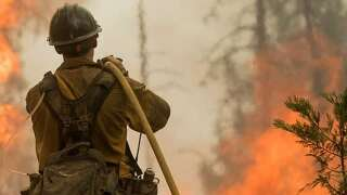 Fire Season Starts Today, Burn Ban In Effect