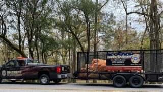 smpso litter trailer.jpg
