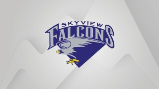 Billings Skyview Falcons logo