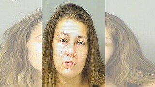 Samantha Fox, accused of stabbing roommate to death