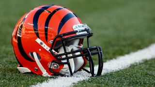 Bengals take stand against domestic violence