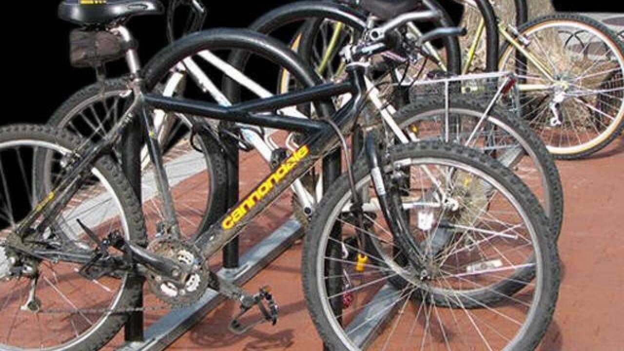 San Diego County Bike Coalition hands out free bike lights